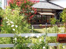 tea grace-zenkei last -kimino town