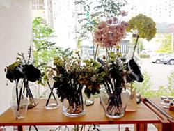 lapre flower-2 wakayama city