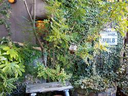 BULB outside-3 iwade city